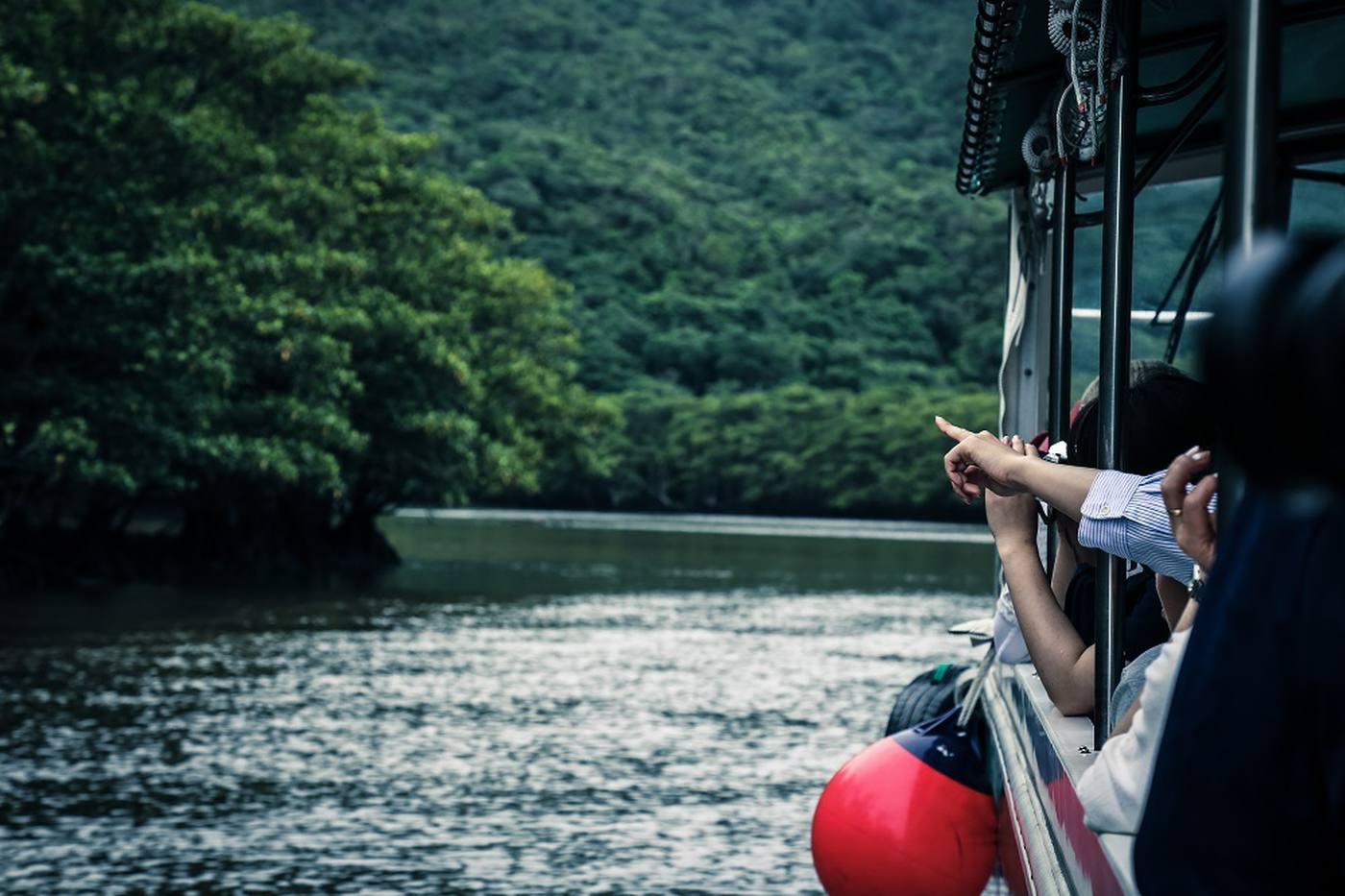 【世界自然遺産登録へ】いま注目の西表島を知ろう!楽しもう! image