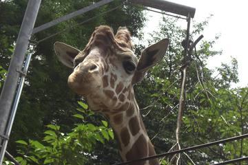 神奈川にある無料動物園のポテンシャルが凄すぎた ~のげやまどうぶつえん~