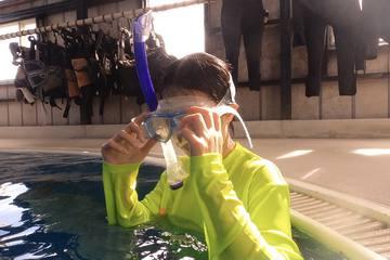 癒しの空間!水中を自由に散策できるスキンダイビングの魅力