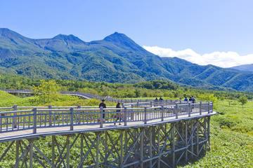 北海道で子どもと参加できる自然体験4選!年齢で選べるおすすめ日帰りツアー