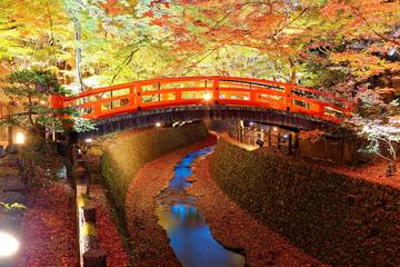 京都は12月も紅葉が楽しめる!12月のおすすめスポット&イベント