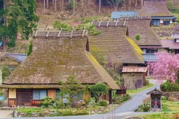 関西近郊で子どもと参加できる自然体験3選!年齢で選べるおすすめ日帰りツアー