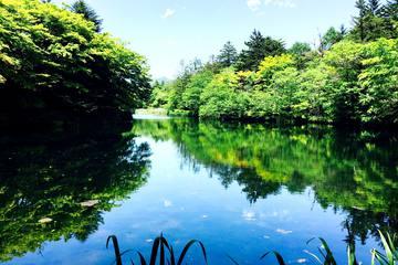 東京発!半日・日帰りで楽しむ関東近郊おでかけプラン|グルメや温泉、買い物を満喫