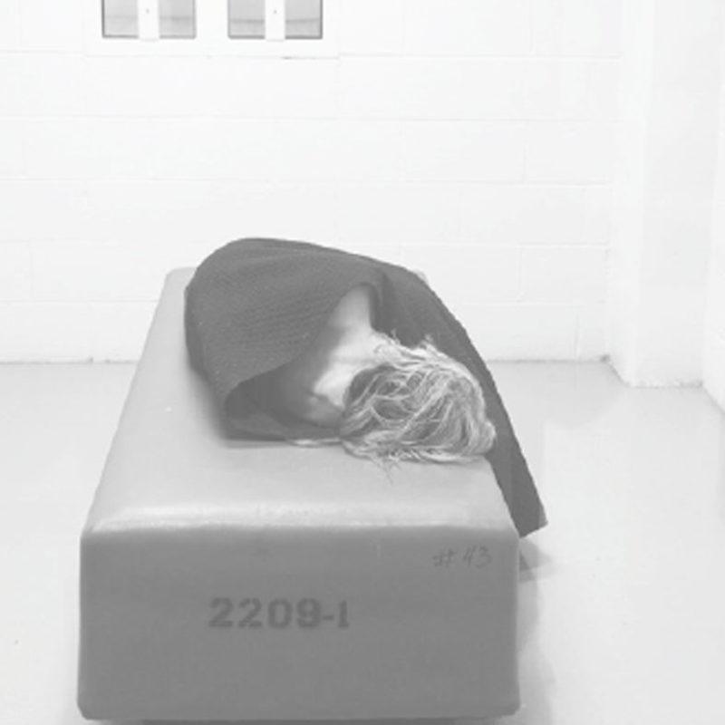 Human Toll of Jail Fact Sheet