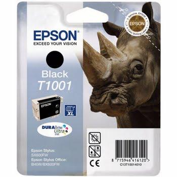 Epson T1001 Black Ink Cartridge (Zwart) C13T10014010
