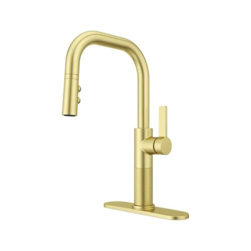 Montay Single-Handle Pull-Down Kitchen Faucet in Brushed Gold
