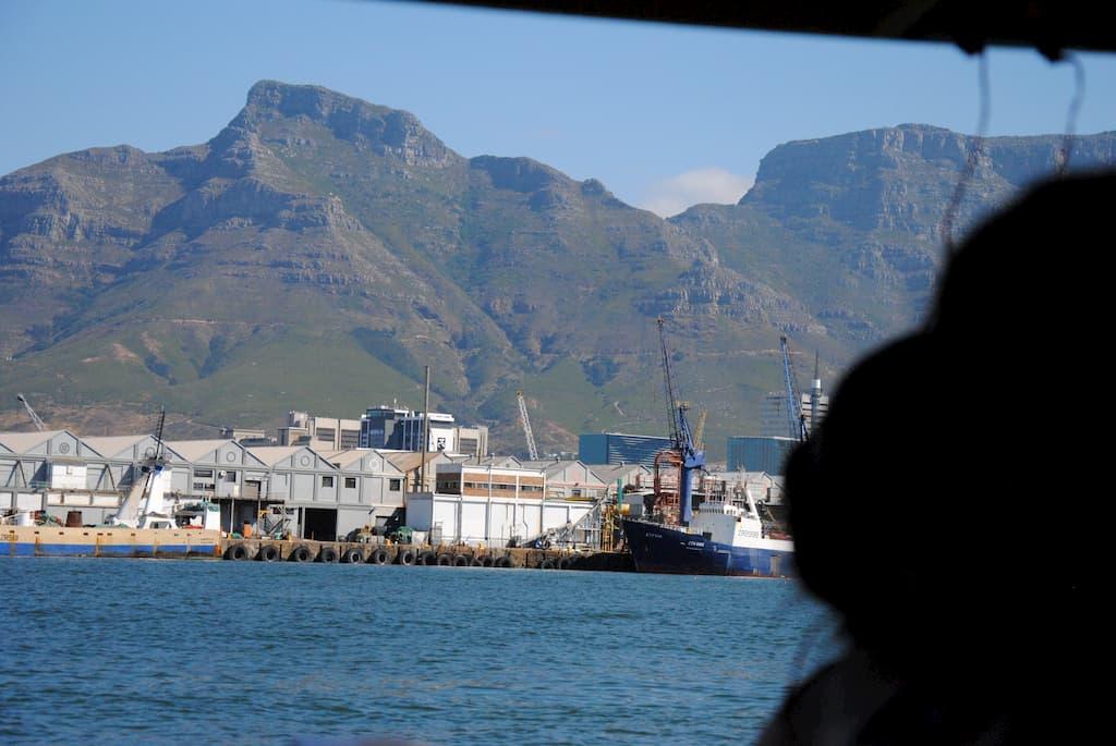 Giro in barca al porto di Città del Capo
