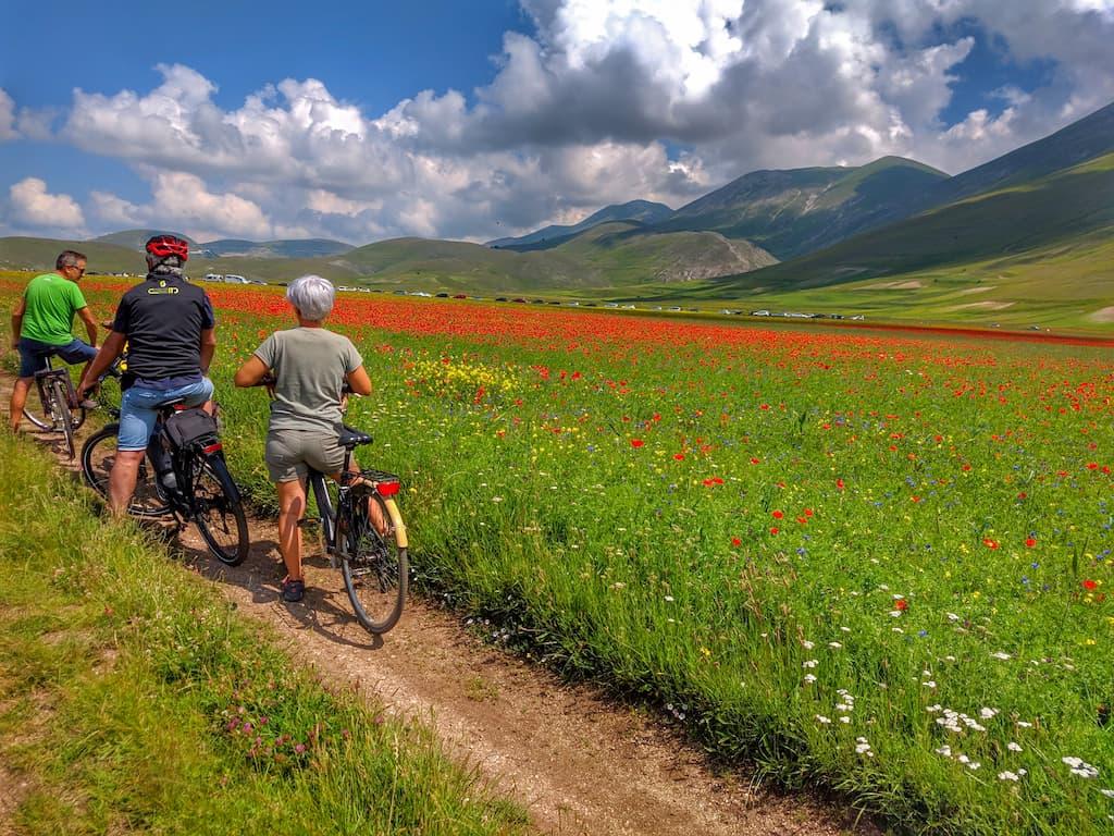Turisti alla Fioritura di Castelluccio 2020