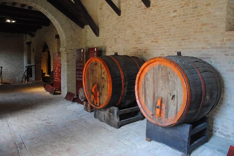 Abbazia di Fiastra   Museo del Vino