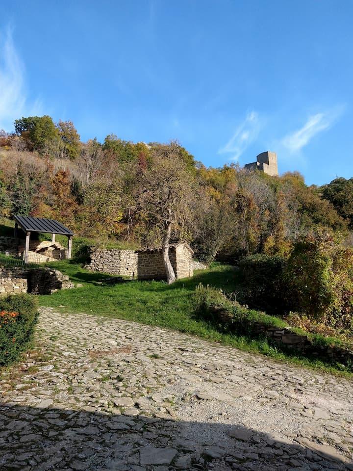 La Rocca di Pietrarubbia in lontananza