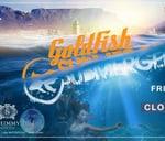 Submerged presents Goldfish - Closing Party   Shimmy Beach Club : Shimmy Beach Club