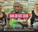 Tembisa Mile : Moses Molelekwa Arts Foundation