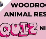 Woodrock Animal Rescue Quiz night : Germiston City sports club