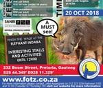 Warthog Fun Walk & Piggy Market : National Zoological Garden