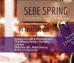 SEBE SPRING INTIMATE SOUL SESSIONS : Roxa Hookah Lounge & Restaurant