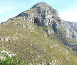 Elephant's Eye Family Hike And Braai Afterwards(Bring And Braai) : Silvermine Nature Reserve, Cape Town