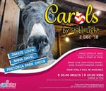 Carols by StableLight : Wetnose Animal Rescue Centre