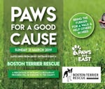 Boston Rescue Pta Day : Paws in the East
