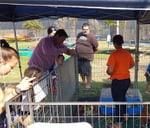 Petting Zoo : Mondeor Restaurant