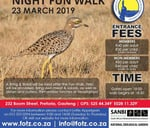 Friends of the Zoo Night Walk : National Zoological Garden
