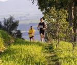 Swallows Trail Run presented by FALKE : Warwick Wine Estate