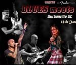 The All Star BLUES MEETS ROCK Show - 14 June (Durbanville GC) : Durbanville Golf Club
