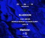 Blueroom pres. Vinyl x Digital // Mødular. : Blueroom