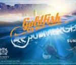 Submerged presents Goldfish   Shimmy Beach Club : Shimmy Beach Club