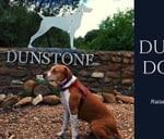 Dunstone Dog Walk : Dunstone