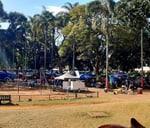The Musgrave Market : Berea Park