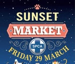 Sunset Market at the Kloof and Highway SPCA : Kloof and Highway SPCA
