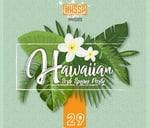 Hawaiian sosha spring party : Park, Block TT Soshanguve South