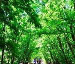 THUHC 47- Rietvlei Zoo Farm 5km (Pet Friendly Hike) : Rietvlei Zoo Farm