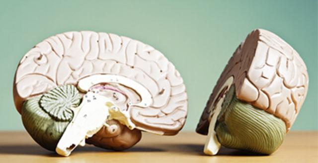Jornada Virtual Neuropediatría y Fisioterapia