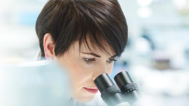 Mujeres científicas sénior en el ámbito de la actividad física