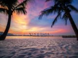 hinh anh tong quan vi tri vinhomes ocean park - thanh pho bien ho trong long Ha Noi