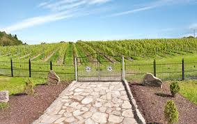 Ästad Gård vingård