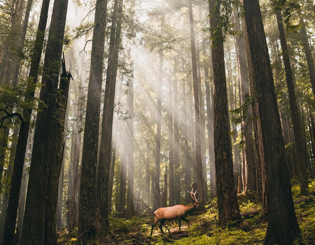 Amazing Travel And Adventure Photography Of Sam Morrison