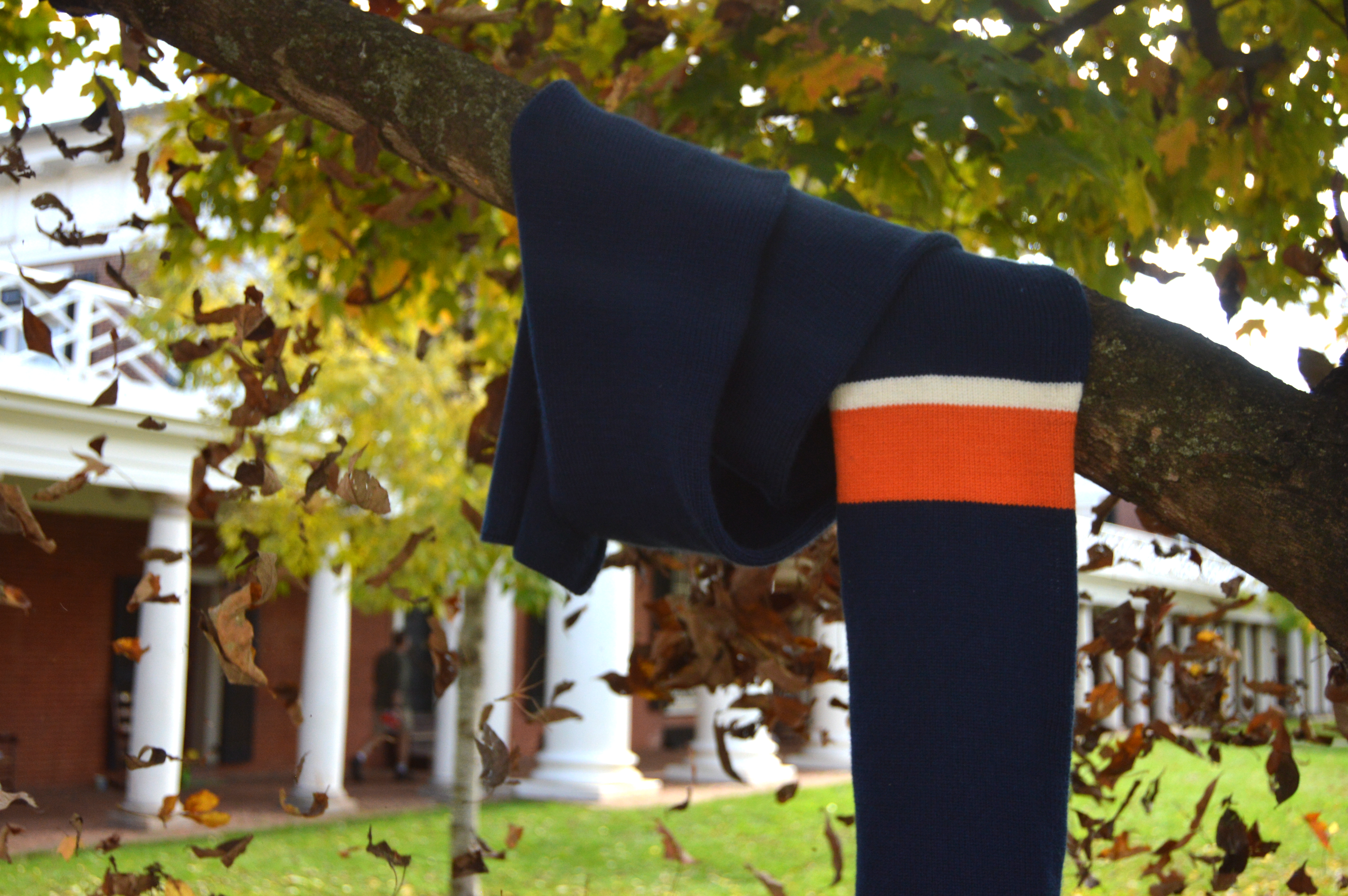 Classic scarf hanging from tree