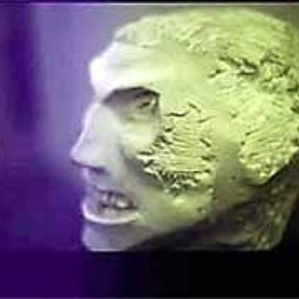 Aftermath Visionary aka Skullpture 1