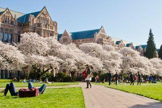 Estudiantes internacionales en el campus de UW