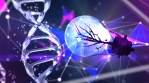Vital Power DNA 4K Vj Loop 02
