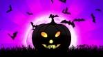 Halloween Pumpkin in Magenta Background
