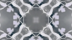 kaleidoscope loop white grey analog flower and shapes 008