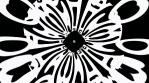 Whimsical Spinning Black and White V1 Circular Gel Matte Loop