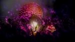 Amanita Muscaria magic mushrooms glowing spores abstract animation