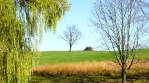 Bike riding in fall, picturesque country landscape, grassy hills and trees