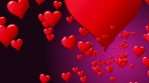 Seamless flow of red hearts. Animation of flight hearts at purple background. Seamless loop.