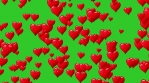 Horizontal motion of red hearts at green background. Motion graphic. Seamless loop. Track to right.