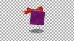 WastedWinterWonderland 1 - character_gift_rotate
